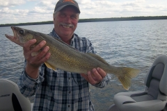 "Dave Harms 25.5"" Walleye Released Sept 18th"