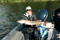 "Barb Willer 38"" Northern Released August 4th"