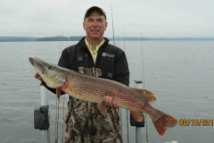"""Marty Neihouser 38.5"""" Northern Released Aug 16th"""
