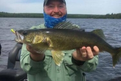 "Jordon Hansen 24"" Walleye released June 16th"