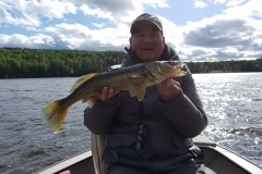 Ron Phippen Walleye