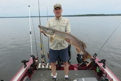 "Marty Neihouser 42.5"" Northern Released"