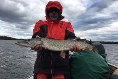 Scott Sorenson Nice Northern Released