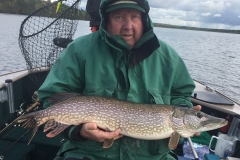 Bob Friendshuh Nice Northern Released
