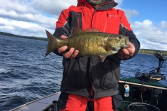 Scott Sorenson Smallmouth Bass Released